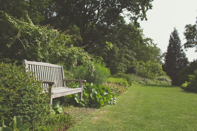garden-7294